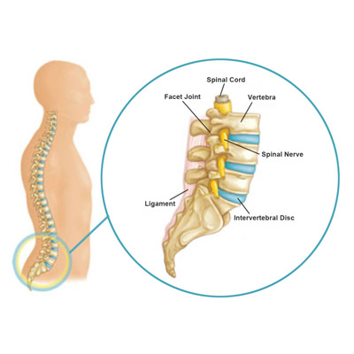 Any Type of Spine Problem Treatment