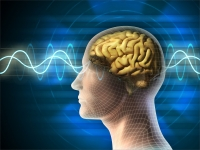 All You Need To Know About Neurotherapy Treatment